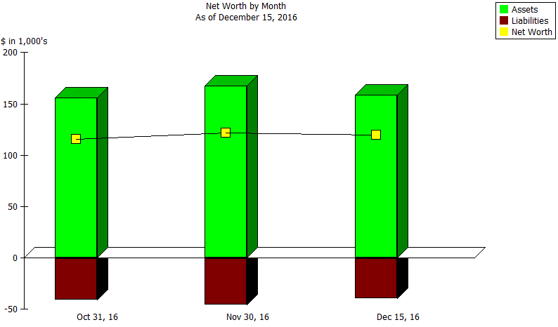 Net Worth by Month report