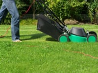 Setting up Accounts for Lawn Care and Landscaping